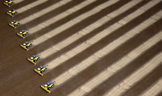 Foto aérea de varias cosechadoras trabajando en un campo de soja en la granja Delta de Correntina (Brasil).