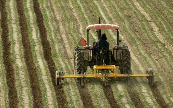 Cultivo de un campo en Salinas, California.