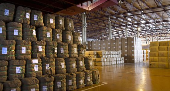 Interior de la planta tabacalera de Altadis en Cádiz, cerrada recientemente.