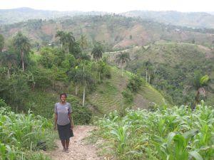 La deforestación es uno de los problemas más graves de Haití.