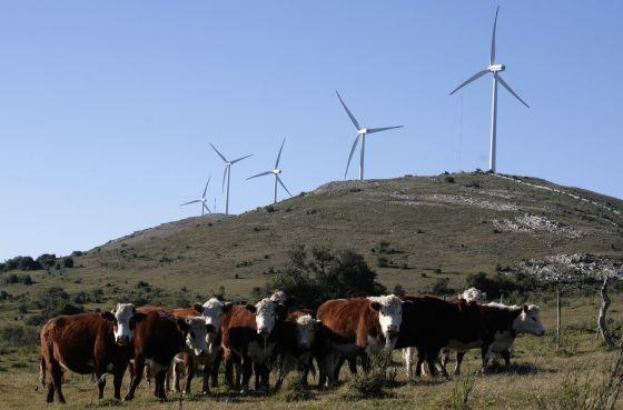 Molinos de viento en la Sierra de Caracoles, Uruguay.