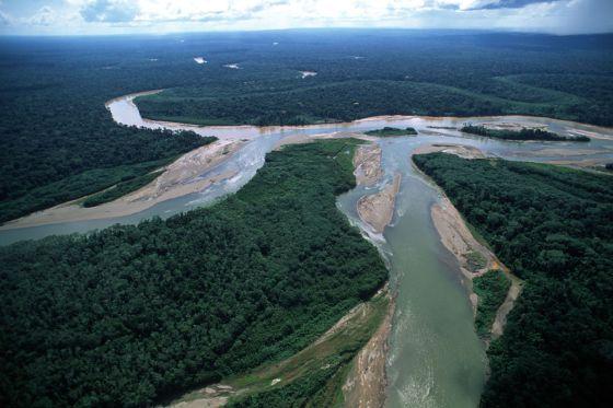 Una imagen de la selva amazónica en Perú.