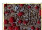 Imágenes de satélite revelan los estragos causados por Boko Haram