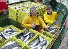 La mala gestión de la pesca en la UE desperdicia capturas y empleos