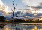 Los pantanos, la protección contra inundaciones en Latinoamérica