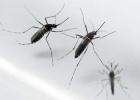 El virus del chikungunya se expande por el sur de México