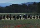 Grecia, Bulgaria y Turquía unen fuerzas contra la inmigración