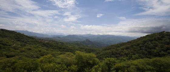 La sierra de Sinaloa, fortín y zona de cultivo de droga del cartel.