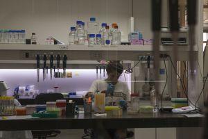 Un laboratorio de la empresa biotecnológica Bioceres, en Rosario.