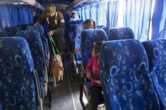 Un gendarme argentino controla con su perro si hay droga en un autocar que acaba de cruzar desde Bolivia.