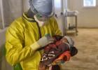 El milagro de Nubia pone fin al ébola en Guinea
