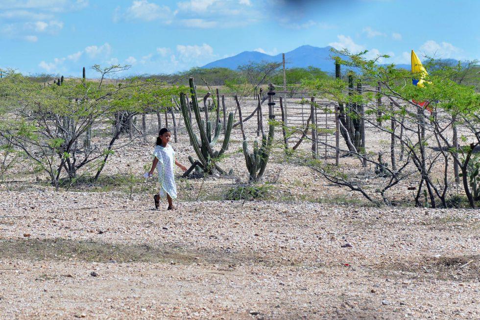 Una niña indígena en el Parque Nacional de Bahía Portete-Kaurrele, en La Guajira.