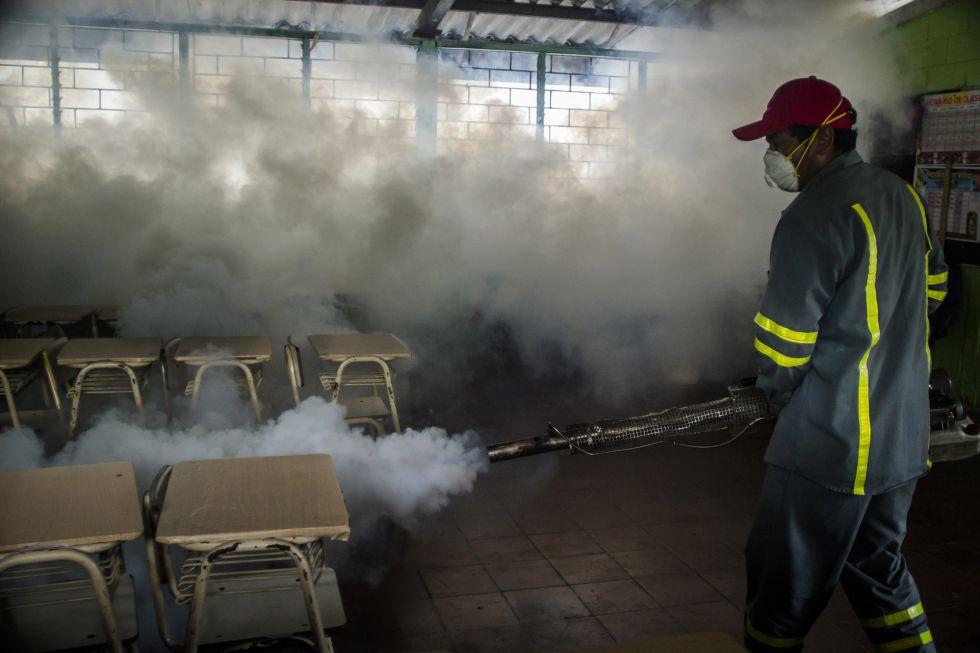 Para OMS, Virus zika é emergência mundial