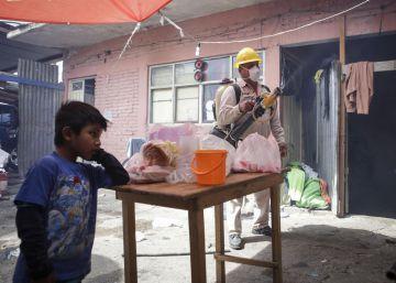 La OMS declara el virus del zika una emergencia global