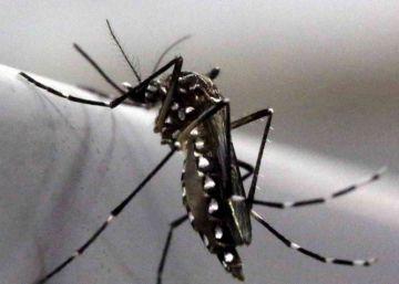 El temor al zika amenaza con disparar el aborto clandestino en América