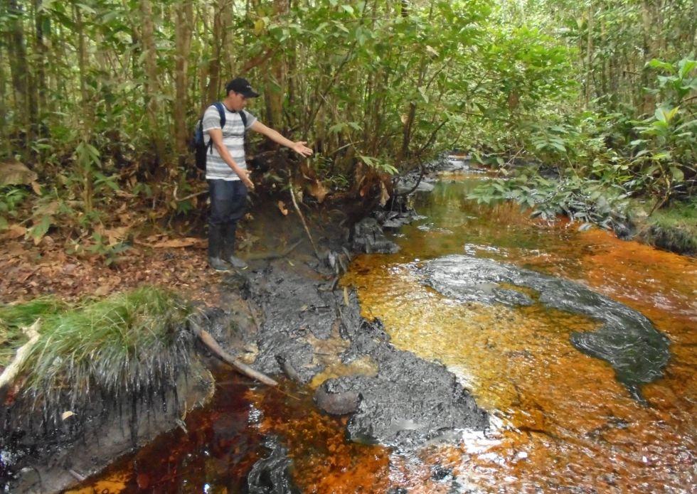 Zona afectada por la rotura de un oleoducto en Datem del Marañón.