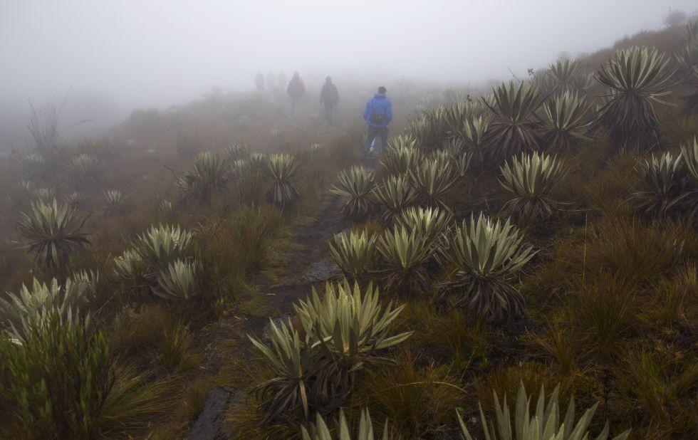 Parque Nacional de Chingaza, en Colombia