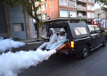 Argentina admite 15.000 casos de dengue