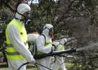 El dengue llega ya al corazón de Buenos Aires y asusta a todos