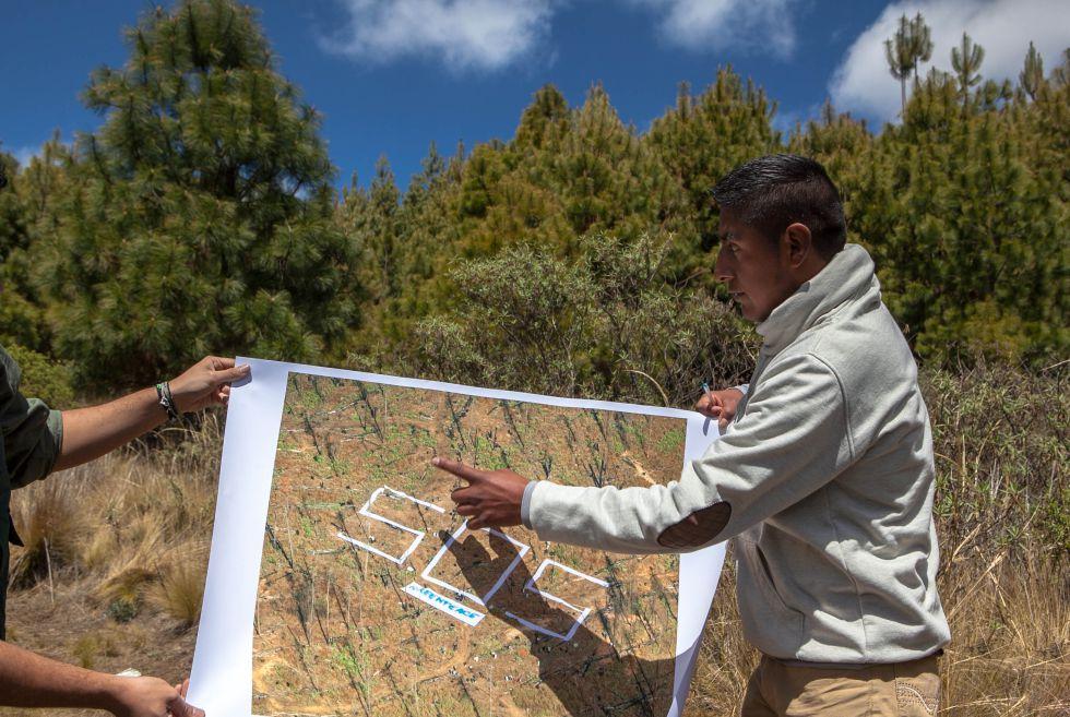 Misael muestra una foto de una zona deforestada, que su comunidad ha recuperado.