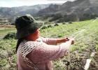 """Cinco ideas para mantener a El Niño """"bajo control"""""""