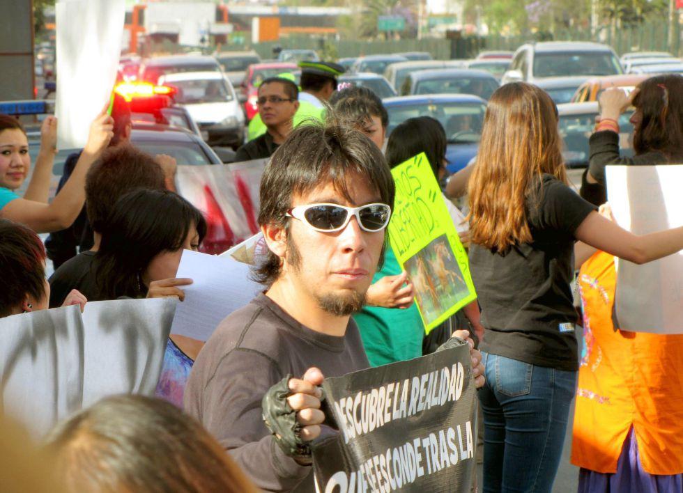 Jesse Montaño, en una protesta contra un circo en 2013.