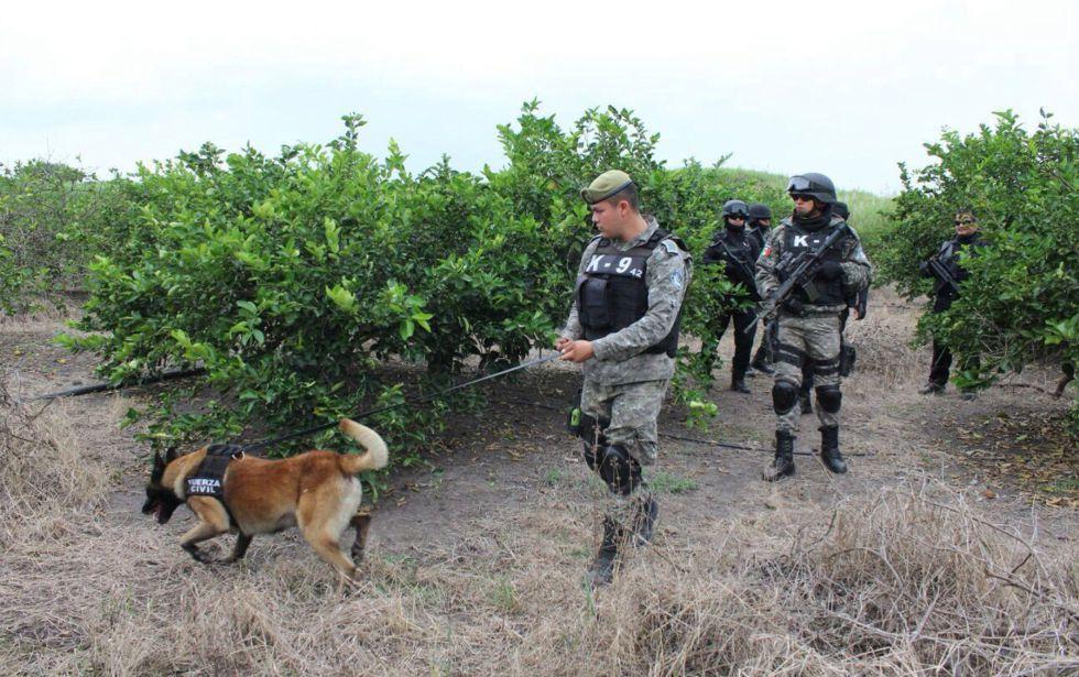 La policía busca cuerpos en Veracruz en enero de este año.