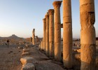 Palmira, espejismo y señuelo