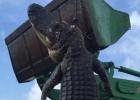 Cazado un cocodrilo monstruoso en una granja de Florida