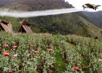 El Europarlamento pide restringir el uso de un polémico herbicida