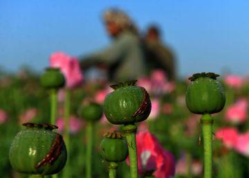 Santos reclama un nuevo consenso global ante el fenómeno de la droga