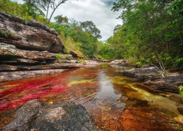 Colombia impide la exploración petrolera próxima a Caño Cristales