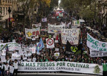 Argentina marcha pela regularização da maconha medicinal