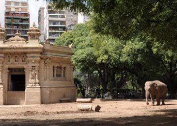 El Zoológico de Buenos Aires cierra después de 140 años