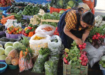 Agricultura familiar, punta de lanza contra el hambre en América Latina