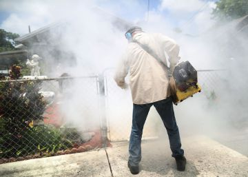 Miami, 'zona cero' del zika