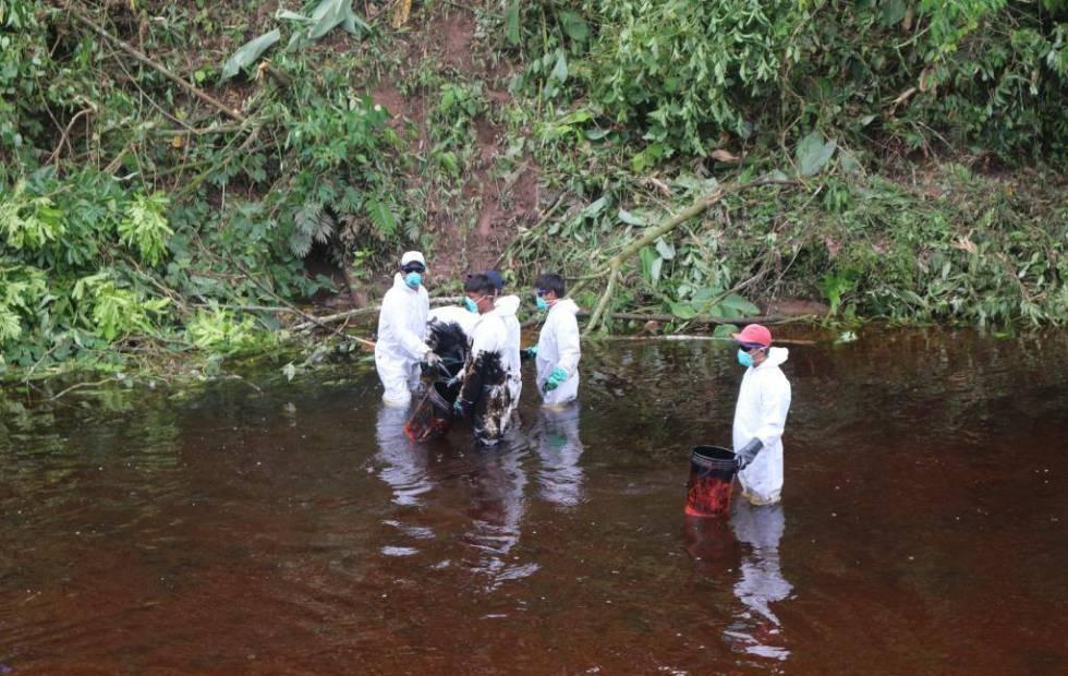 El quinto derrame de petróleo del año tiñe de negro la Amazonía peruana