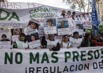 La marihuana legal germina en América Latina