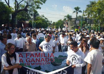 El 'ombusdman' mexicano respalda el matrimonio gay ante la marcha por la familia tradicional en la capital