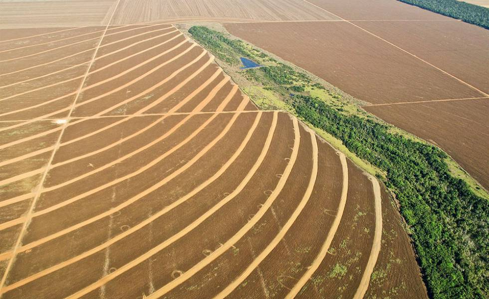 Campos de cultivo en Mato Grosso, Brasil.