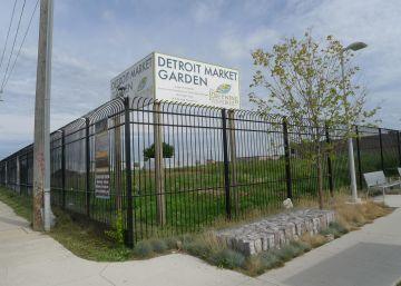 Verduras para salvar Detroit