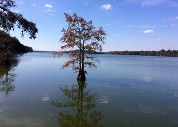El lago que divide el lugar más desigual de Estados Unidos