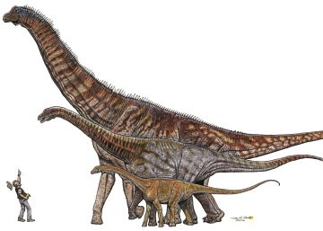 The Brazilian monster that looked down on 'Tyrannosaurus rex'