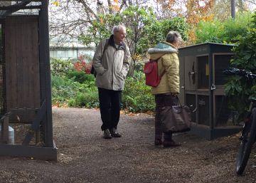 París ocupa con gallinas el jardín de los héroes españoles de La Nueve