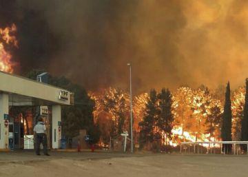 El fuego destruye bosques en los balnearios más exclusivos de Argentina