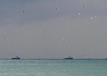 Un avión ruso con 92 personas a bordo se estrella en el mar Negro