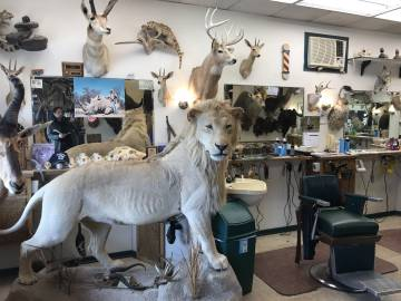 Barbería adonde acude habitualmente Karkoc y donde se exhiben los trofeos de caza del dueño.