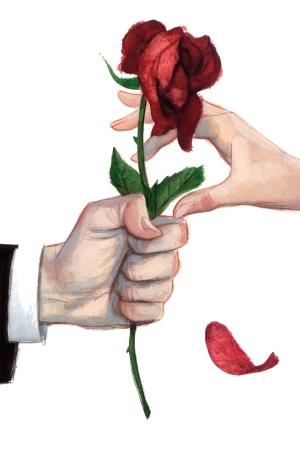 Una rosa para Rosa