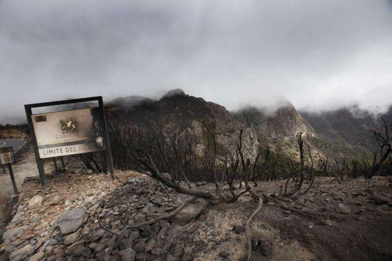Desolador aspecto del Parque Nacional de Garajonay.
