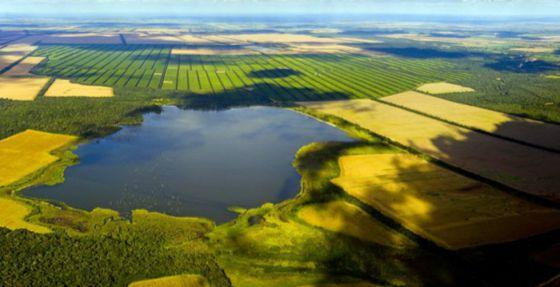 La explotación agrícola argentina La Moraleja.